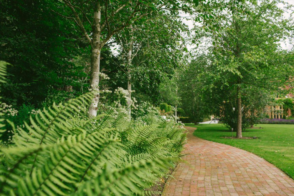 Brick garden path and planting design