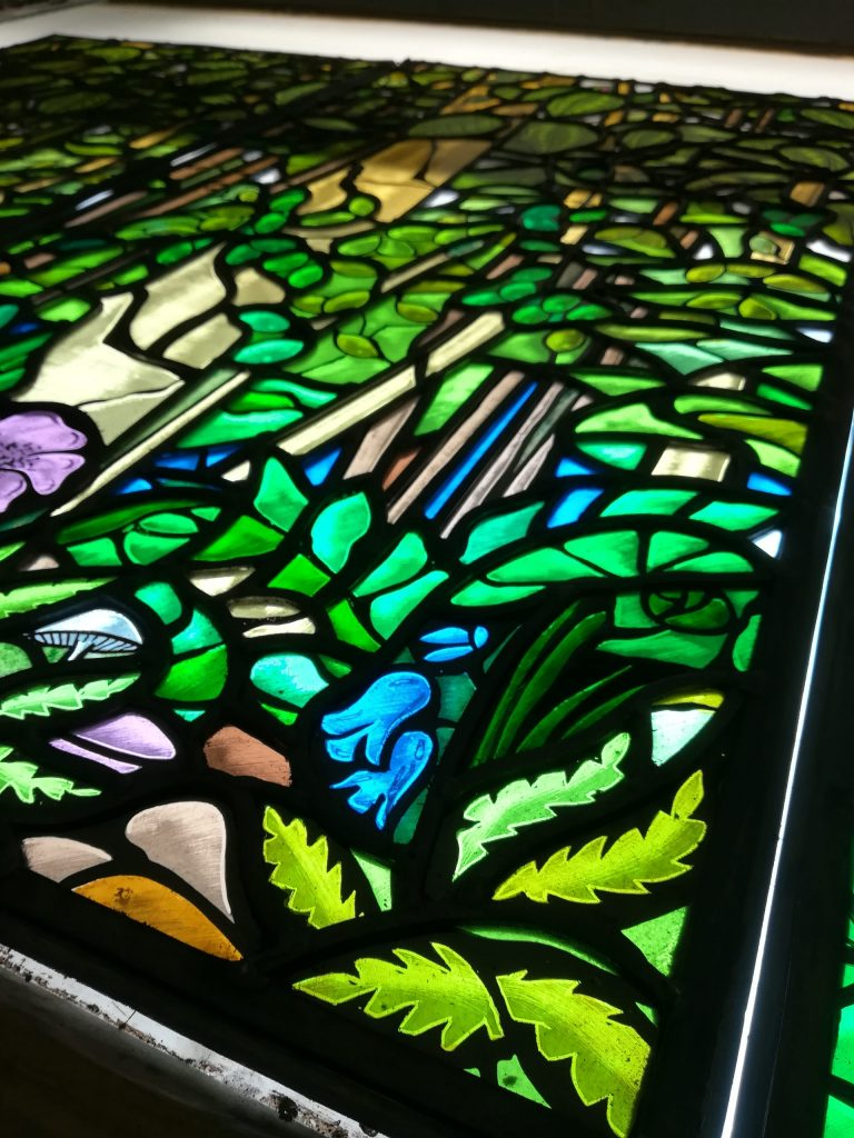Stained Glass Bluebells, Ferns and Mushrooms